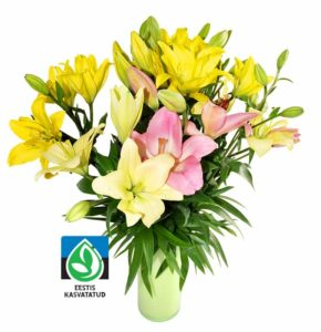 Liilia Rikets lilled