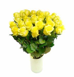 Kollane roos 70cm