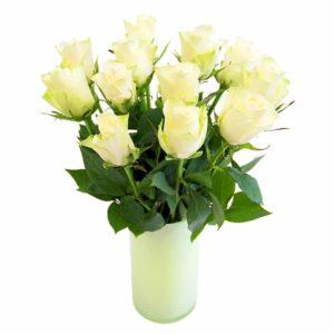 Valge roos 50cm
