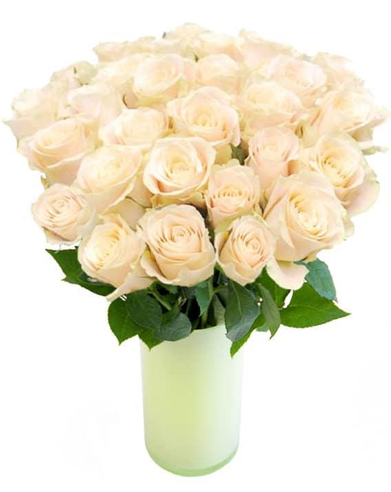 valged roosid