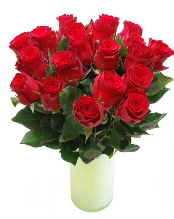 Punane roos 50cm