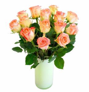 Roosa roos 50cm
