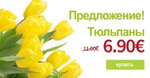 eripakkumine_tulp2_rus