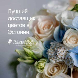 rikets-lilled-2-mobiil-vene