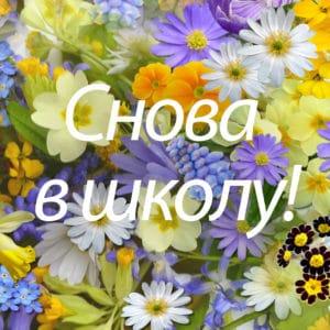 rus_kool_mobiil