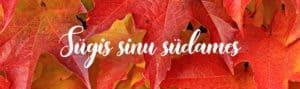 ee_sugis_desktop