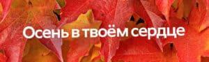 rus_sugis_desktop