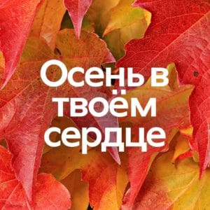 rus_sugis_mobiil