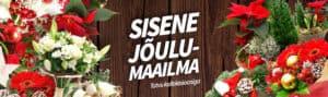 joulud_desktopee2