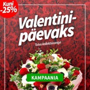 valentin_mob2