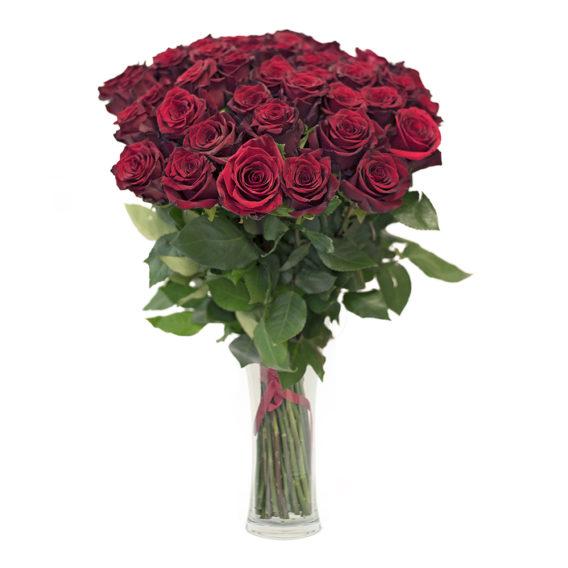 20 pikka punast roosi K103