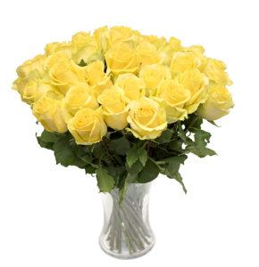 Kollane roos L016