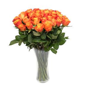 Oranž roos L022