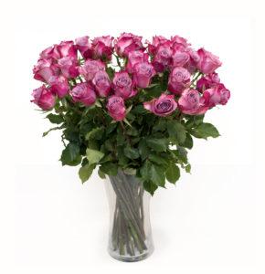 Lillad roosid L025