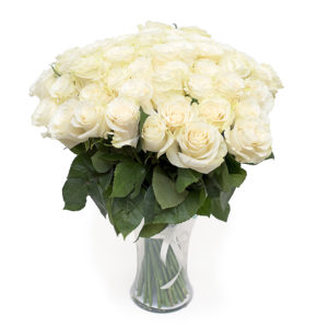 Valge roos L027
