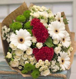 Lillekimp jõuludeks K148_1