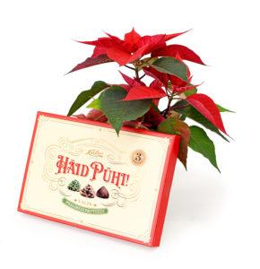 Jõulutäht pühade kommidega