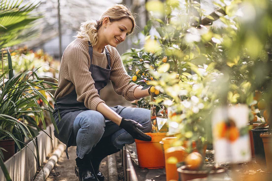 7 olulist sügisest aiatööd, mida ei tasuks ära unustada!